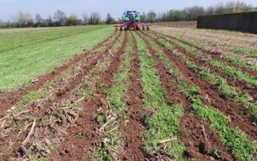 affitto-terreni-agricoli-titoli-pac-349x218_c